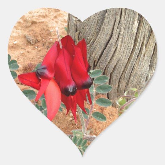 Sturt's Desert Pea heart sticker