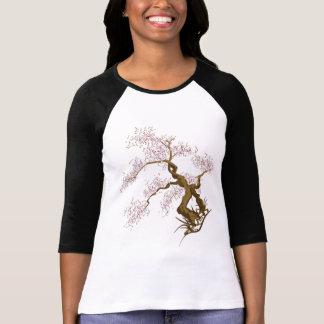 Stylish Sakura Tree • Ladies 3/4 Sleeve Raglan T-Shirt