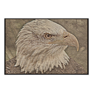 Stylized Bald Eagle Series - Number 16 Poster