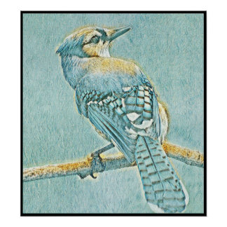 Stylized Blue Jay Series - Number 12 Poster