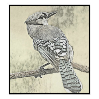 Stylized Blue Jay Series - Number 17 Poster