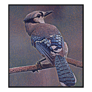 Stylized Blue Jay Series - Number 20 Poster