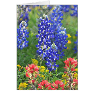 Stylized Bluebonnet Card