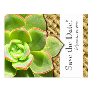 Stylized Hen and Chick Burlap save the date Postcard