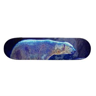 Stylized Polar Bear Skate Boards