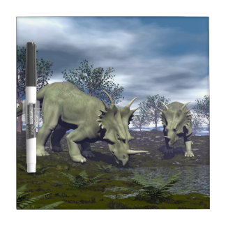Styracosaurus dinosaurs going to water - 3D render Dry Erase Board