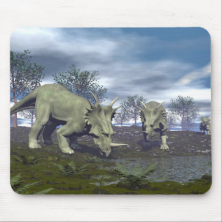 Styracosaurus dinosaurs going to water - 3D render Mouse Pad