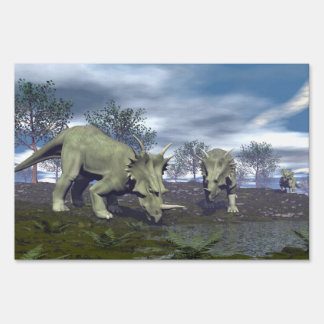 Styracosaurus dinosaurs going to water - 3D render Sign