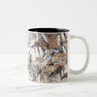 Subterainian Termites? Two-Tone Coffee Mug