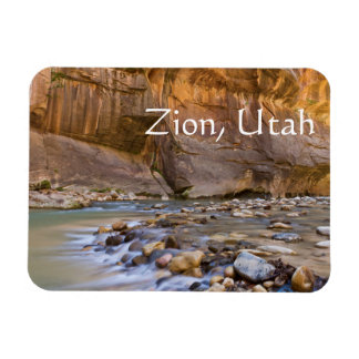 Subway in Zion, Utah Magnet