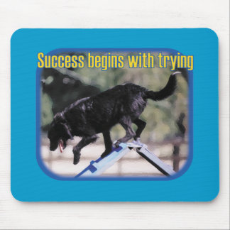 Success Begins With Trying Mouse Pad
