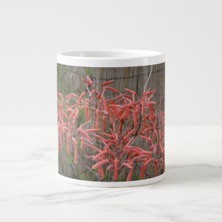 succulent aloe flowers pink neat flower photo jumbo mug