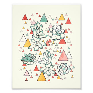 Succulent and triangles Photo Print
