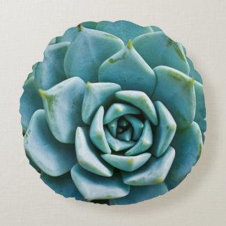 Succulent Closeup Round Pillow