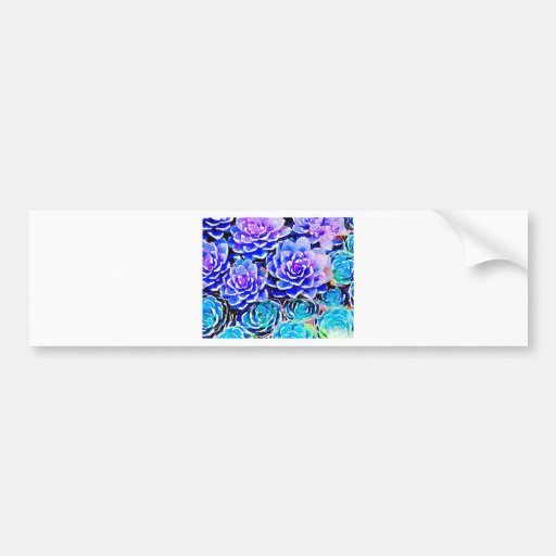 Succulent Colors Bumper Sticker