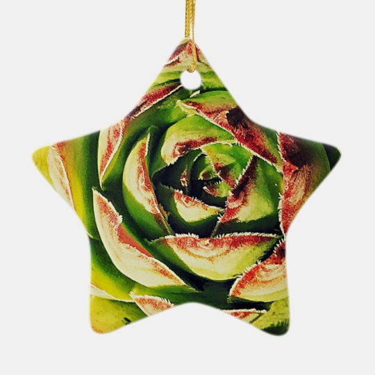 Succulent Dble-Sided Star Ornament