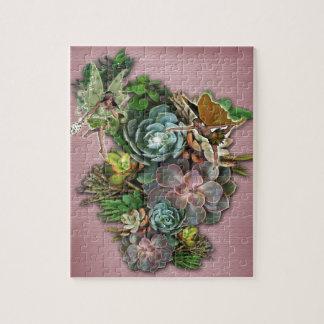 Succulent displays puzzle