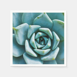 Succulent Disposable Napkin