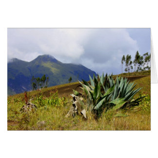 Succulent Ecuador Card