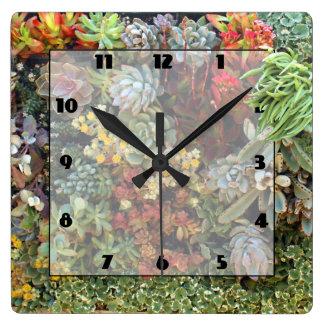 Succulent Garden 2 Square Wall Clock