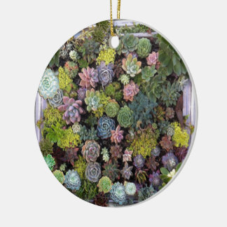 Succulent garden design ceramic ornament