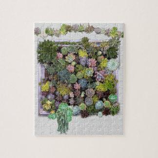 Succulent garden design puzzles