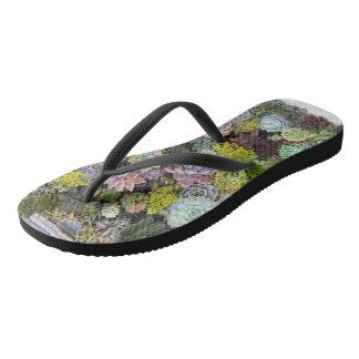 Succulent gardens flip flops