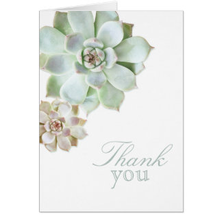 Succulent Graduation Blank Thank You Card