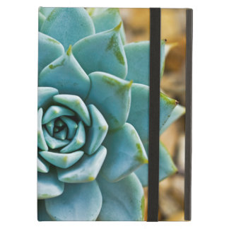 Succulent iPad Air Case