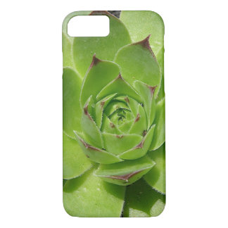 Succulent iPhone 7 case