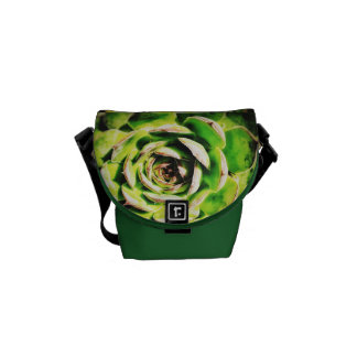 Succulent Mini Messenger Bag