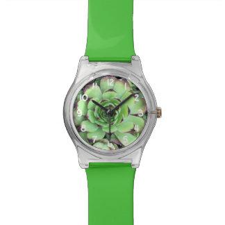 Succulent Plant Texture Pattern Wrist Watches