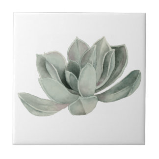 Succulent Plant Watercolor Painting Tile