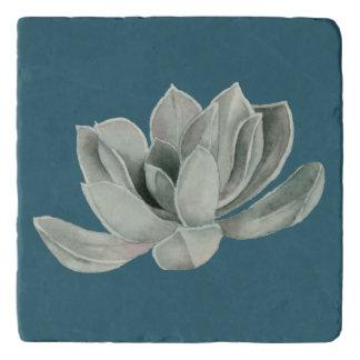 Succulent Plant Watercolor Painting Trivet