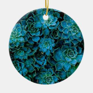 Succulent Plants Round Ceramic Ornament