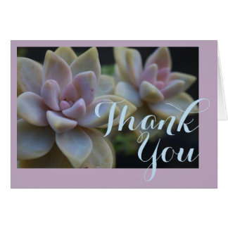Succulent Rancho Del Vinedos Thank You card