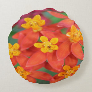 Succulent Red and Yellow Flower Echeveria Round Pillow