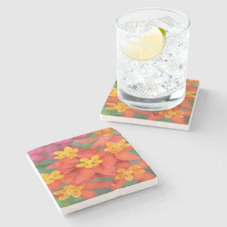 Succulent Red and Yellow Flower Echeveria Stone Coaster