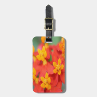Succulent Red and Yellow Flower III Luggage Tag