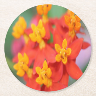 Succulent Red and Yellow Flower III Round Paper Coaster