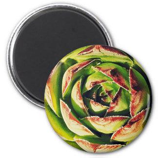 Succulent Round Magnet