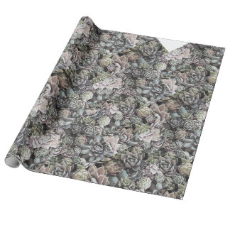 Succulent Sempervivums - Large and Muted Wrapping Paper