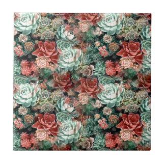 Succulent Succulents Tile