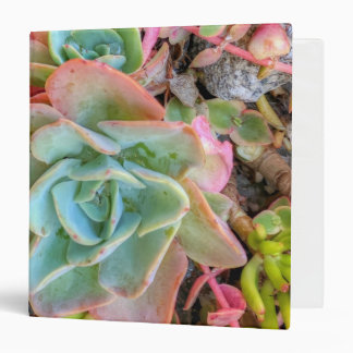Succulents 3 Ring Binder