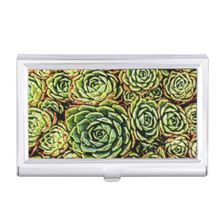 Succulents Business Holder
