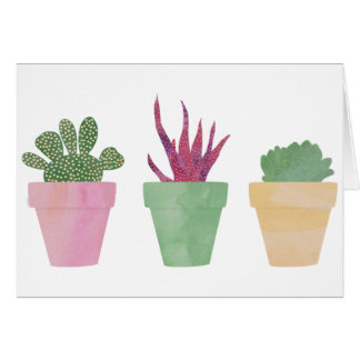 Succulents Illustration Card