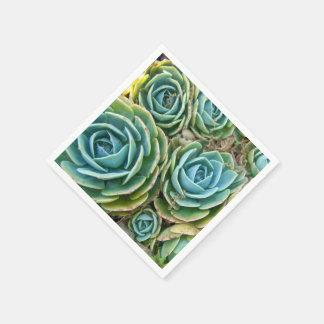 Succulents Paper Napkin