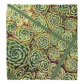 Succulents Scarf Bandana