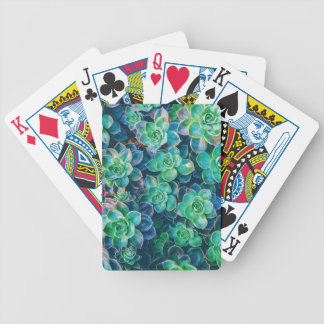 Succulents, Succulent, Cactus, Cacti, Green, Plant Bicycle Playing Cards