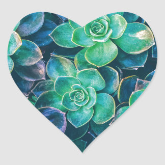 Succulents, Succulent, Cactus, Cacti, Green, Plant Heart Sticker